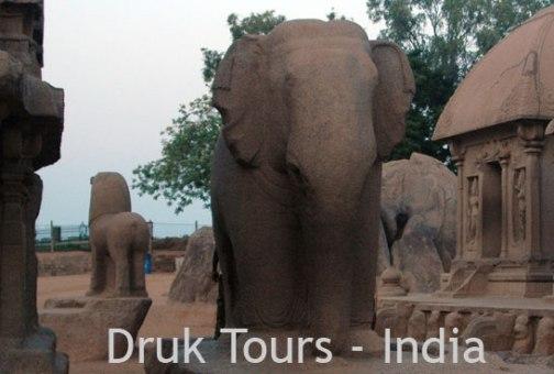 Индийский Тур Друкпа